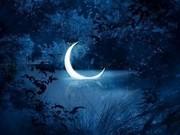 Лечение испуга,  заикания,  энуреза,  лунатизма. Помощь в толковании снов